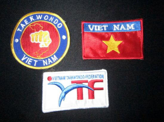 logo v245 thu��t logo v245 thu��t c225c m244n ph225i